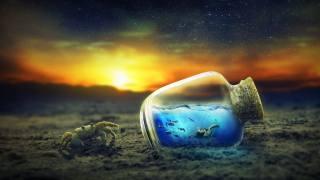 crab, bottle, underwater world