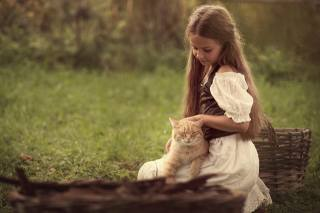 child, girl, Animal, cat, cat, basket, nature