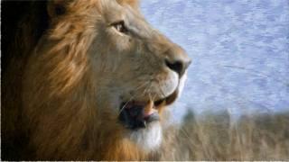 лев, мазки, мальований