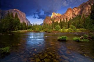 природа, горны, річка, хвойное дерево