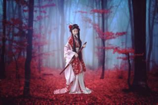 девушка самурай, podzim, les, stromy, mlha, oblečení, účes, Meč