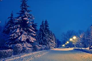 evening, winter, snow, Alley, Park, beautiful