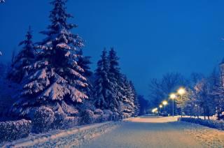 вечір, зима, сніг, Алея, парк, красиво