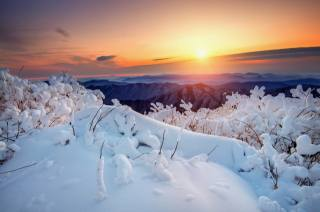 winter, the sun, snow, trees, landscape, mountains, nature, dawn, morning, National Park, South Korea, reserve, Deogyusan, Тогюсан