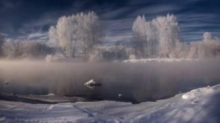 winter, snow, trees, landscape, nature, river, the shore