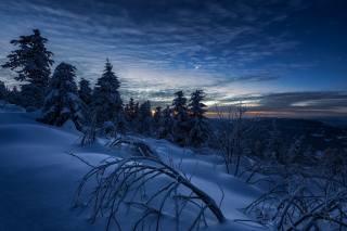 вечер, зима, снег
