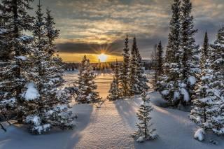 nature, sunset, drifts, landscape