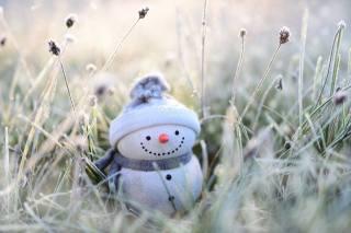 grass, snowman, hat, scarf