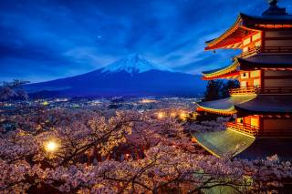 небо, дерева, краєвид, ніч, природа, весна, зірки, вулкан, Японія, сакура, освітлення, храм, пагоди, цвітіння, Фудзіяма