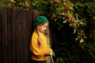 child, girl, braids, takes, sweater, the fence, nature, autumn, branches, hawthorn, berries
