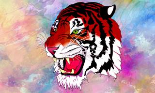 tiger, muzzle, background, art