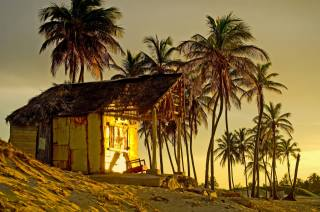 palm trees, hut, sunset, тропика