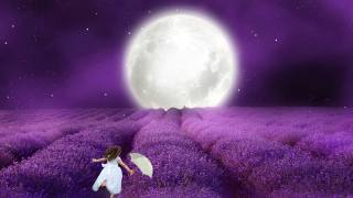 girl, lavender, field, the moon, umbrella, night