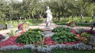 цветы, парк
