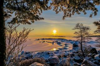 зима, пейзаж, закат, природа, снег, деревья, ветки, солнце, камни, Финляндия, Финский залив, Котка
