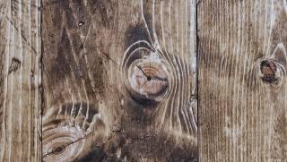 tree, Board, texture