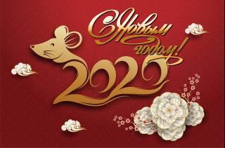 Новый год, 2020, праздник, Рождество