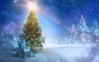 Ной год, праздник, Игрушки, елка, зима, снег, веселье