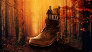 shoes, the house, forest, autumn, photomanipulation