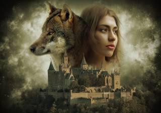 holka, vlk, hrad, pozadí, фотоманипуляция