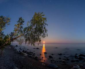 the sky, landscape, night, nature, the lake, stones, tree, the moon, shore, stars, Karelia, lake Onega, Онега, Vaschenkov Pavel