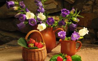 Board, fabric, burlap, wall, stones, jugs, flowers, Bells, basket, berries, strawberry