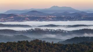 mountains, forest, fog, evening