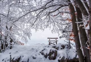 winter, stones, snow, bench, branches, nature