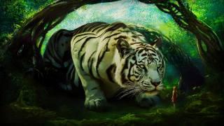 white tiger, creative