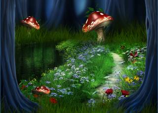 landscape, flowers, the way, forest, river
