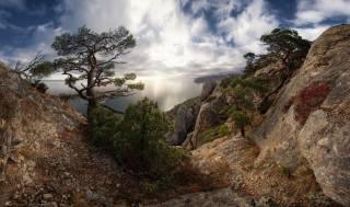 Krym, příroda, krajina, moře, hory, skály, stromy, borovice
