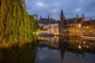 větvičky, město, odraz, strom, budovy, doma, večer, osvětlení, kanál, Belgie, Bruggy