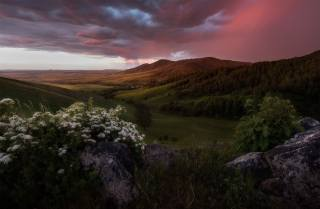 landscape, sunset, mountains, nature, stones, valley, Forest, The BUSHES, Altai, спирея, Paul, Kalinenko