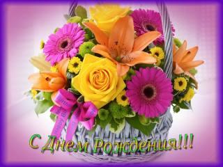květiny, blahopřání, narozeniny