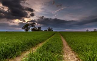 field, road, the sky, grass