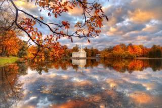 осінь, хмари, дерева, краєвид, гілки, природа, парк, відображення, дуб, пушкин, Ed Gordeev, Гордєєв Едуард, Царське село, едуард гордєєв, Эд Гордеев, музей-заповедник