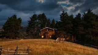деревья, пейзаж, тучи, природа, дом, конь, луг, грузия, Тушетия