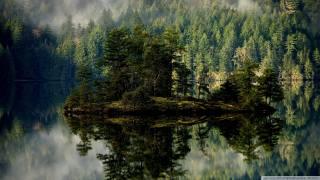 остров.лес, отражение.озеро