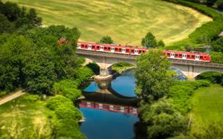 the bridge, train, TOP, nature, the river