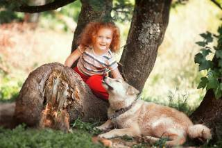 дитина, дівчинка, руда, кучері, Тварина, собака, пес, природа, літо, дерева, стовбури