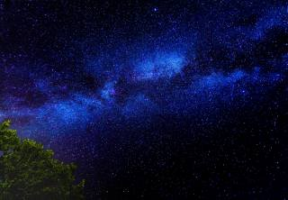 night, the sky, The milky way, tree, Krone