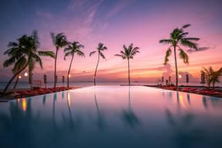 бассейн, курорт, пальмы, океан, Мальдивы