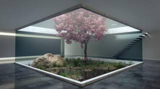 дом, холл, дерево, интерьер