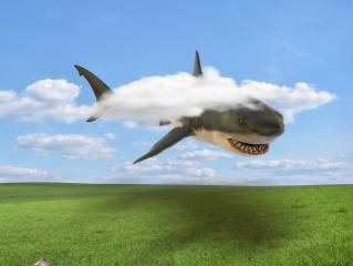 shark, clouds, meadow, flight, Rendering