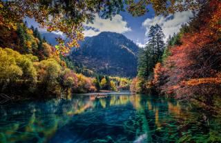 Jiuzaigou valley, China, nature, landscape, reserve, Цзючжайгоу, долина Цзючжайгоу, Forest, the lake, mountains
