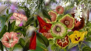 Kwiaty, Powoje, Listki, Grafika