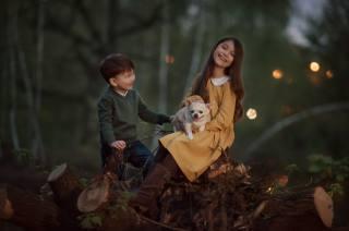 forest, joy, nature, children, Animal, dog, boy, girl, stumps, dog, Юлия Кубар