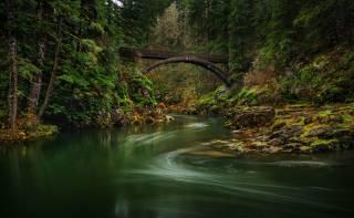 forest, the bridge, stones, lewis, river, Moulton, if, bridge, moss, nature