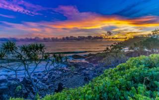 захід, море, каміння, пальма, хвилі, пляж, небо, хмари, краєвид