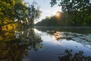 літо, річка, краєвид, красиво, фотограф, Андрей Олонцев